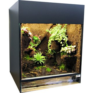 Jungle Terrarium Compact, 40x40x50 cm